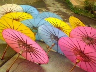 Payung geulis polos
