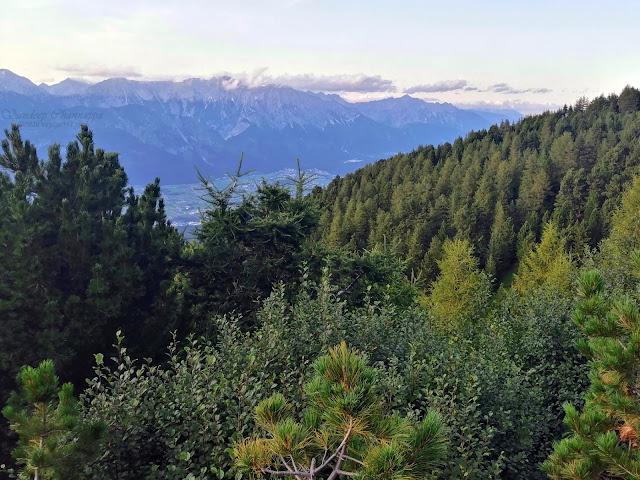 Pine forests through the Zirbenweg hike