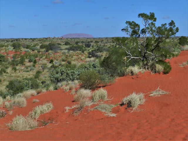australia cosa vedere nell'outback