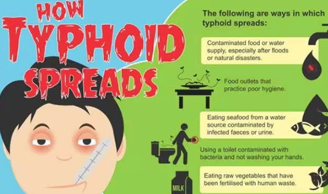 typhoid disease treatment in nigeria