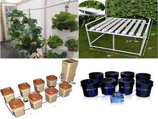 """hydroponic system"",""growing plants with hydroponics system""buying tips hydroponics system"""