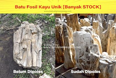 batu fosil kayu poles dan belum poles