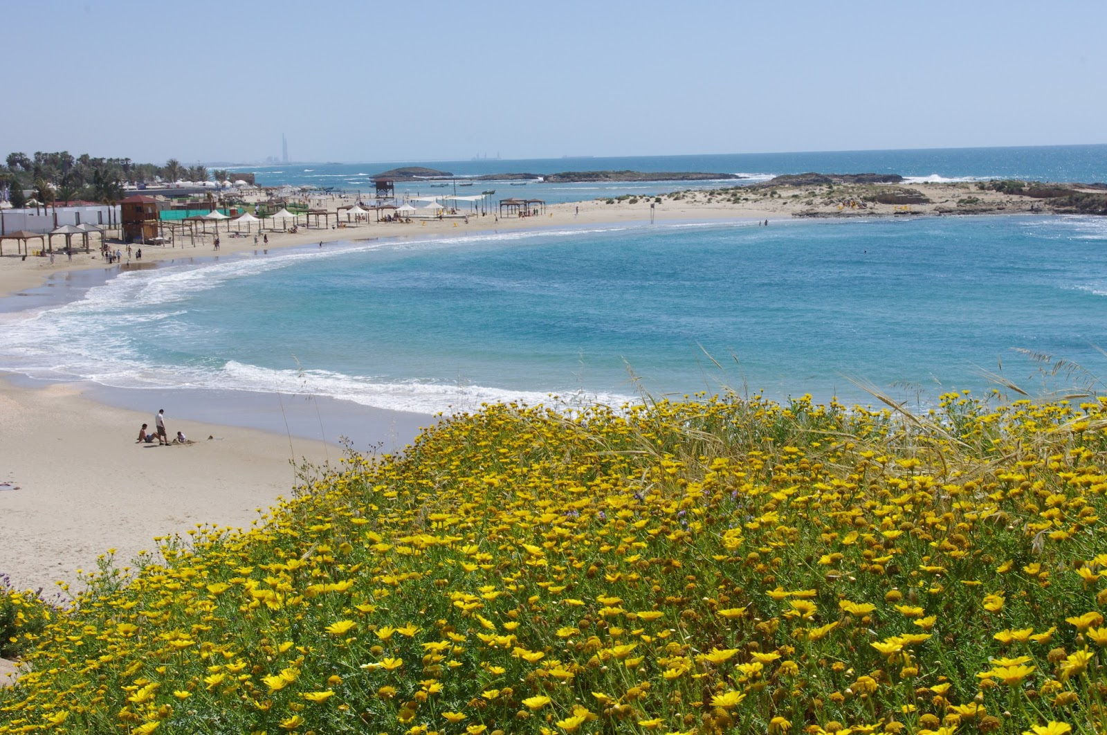 A letter from israel israeli beaches in the winter in the summer this beach would be packed with people publicscrutiny Image collections