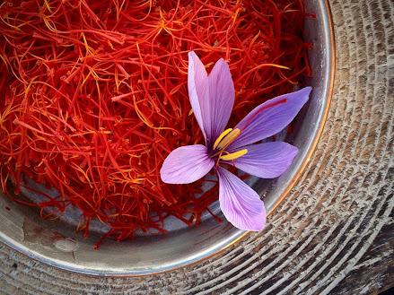 Saffron - Nhuỵ hoa nghê tây: thảo dược của sức khoẻ và sắc đẹp