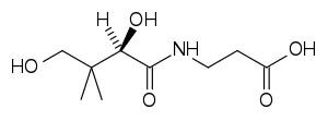 Structure of vitamin B5