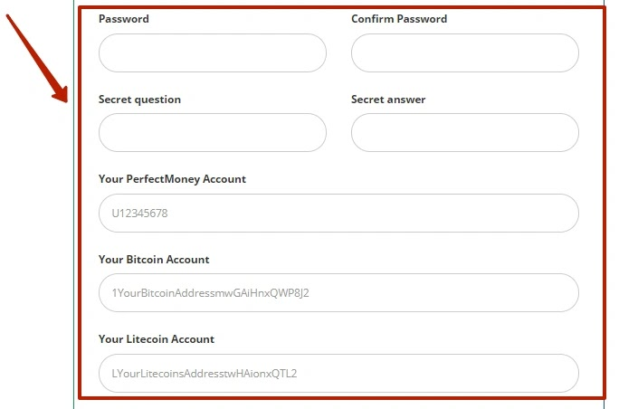 Регистрация в Bitochen 3
