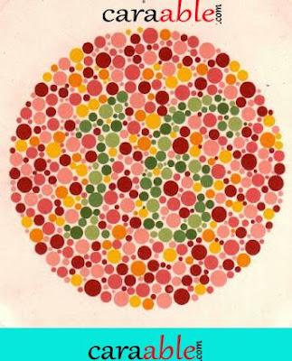 Contoh tes buta warna online tersulit lengkap ishihara