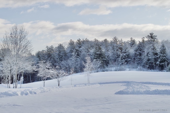 Our Picture Perfect Postcard Winter View at Pieced Pastimes