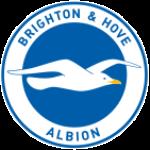Daftar Lengkap Skuad Nomor Punggung Nama Pemain Klub Brighton & Hove Albion F.C. Terbaru 2016-2017