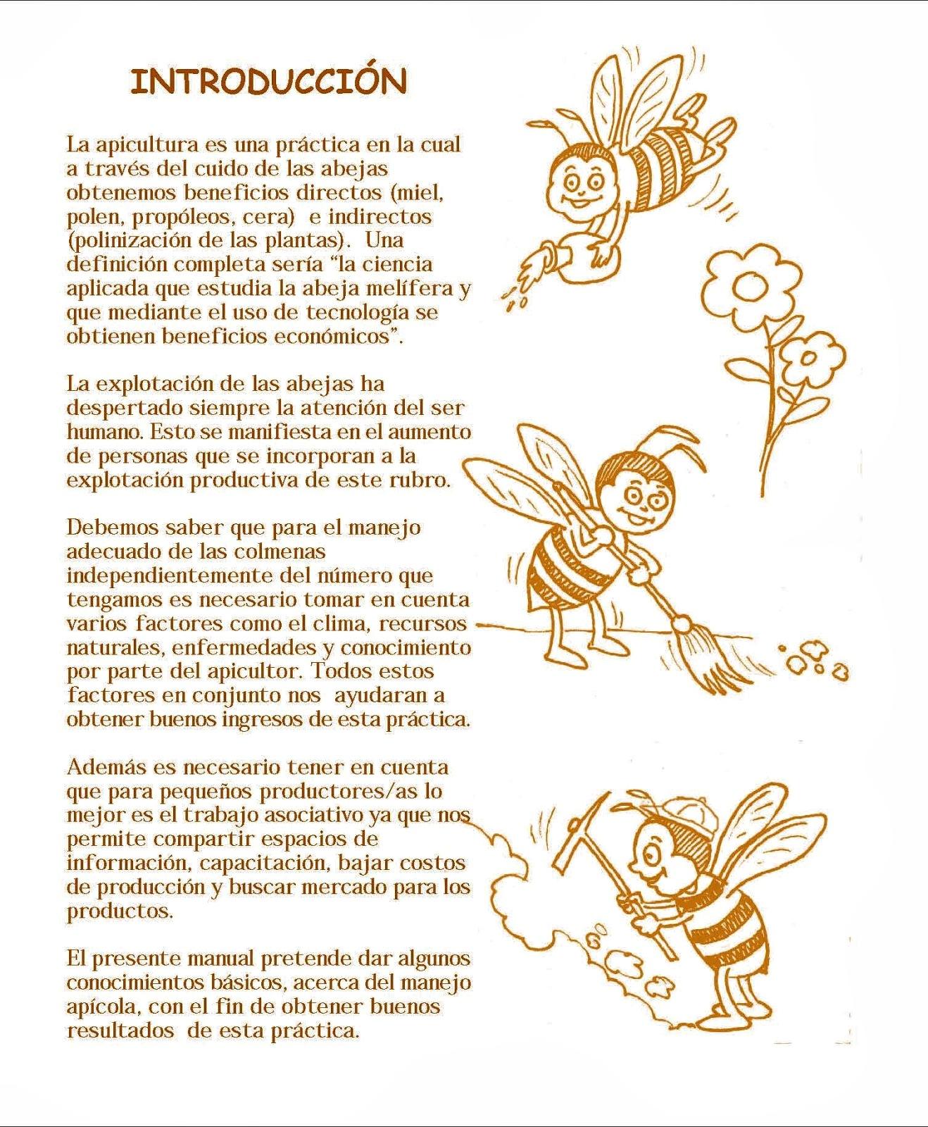 miel de abeja para bebes