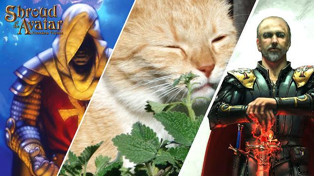 Shroud of the Avatar is Now a Catnip Game • Shroud of the Avatar News