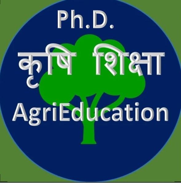 Ph.D. degree programmes