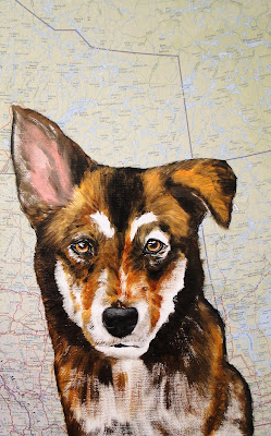 work-in-progress photo 2, oil painting of a sled dog