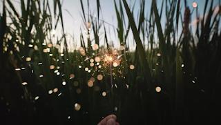 Όταν χαιρόμαστε με το τίποτα, απολαμβάνουμε τα πάντα