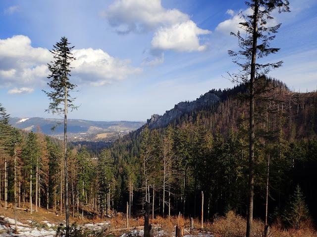 Widoki na Nosal i część Zakopanego