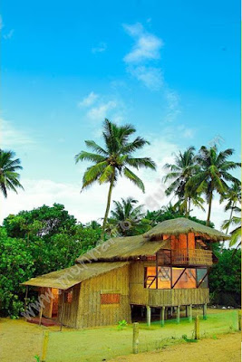 seafront cottages in Alleppey, luxury coastal cottages in kerala alleppey