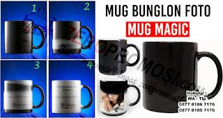 Mug Bunglon bisa menjadi Salah Satu Inspirasi Kado Yang Cocok Diberikan Kepada Orang Yang tersayang