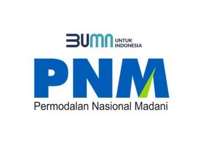BUMN PNM