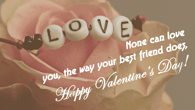 funny valentines day quotes for friends and family