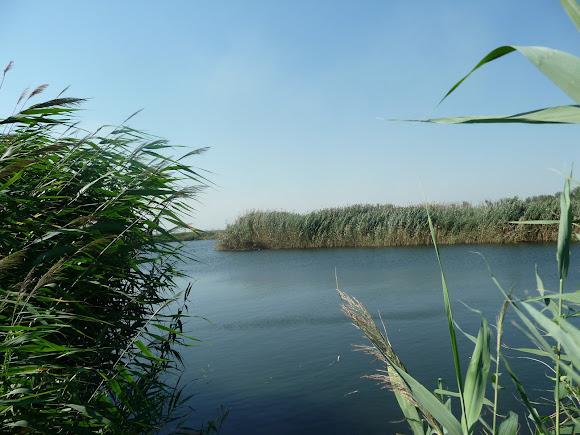 Річка Вовча. Селище Васильківка Дніпропетровська область