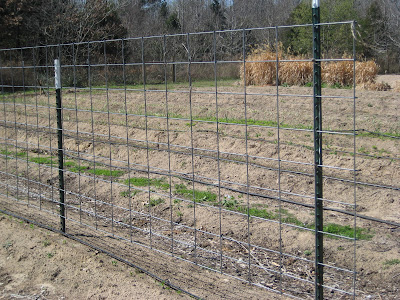 The Gardens Of Edom Structure For Vegetable Gardens