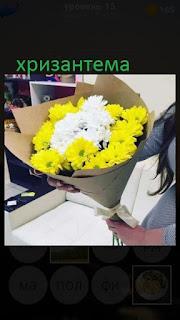 389 фото в руках у девушки букет цветов с хризантемами 15 уровень