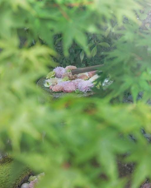 Fuente en medio de arbustos con flores rosas y blancas