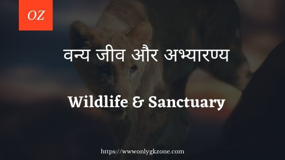 Wildlife & Sanctuary