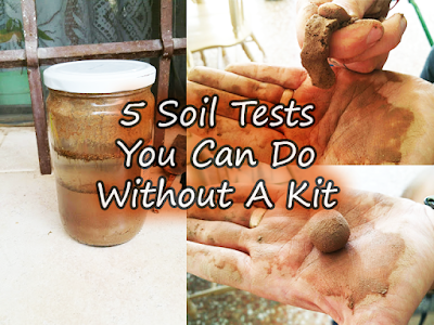 5 Ways To Test Your Garden Soil