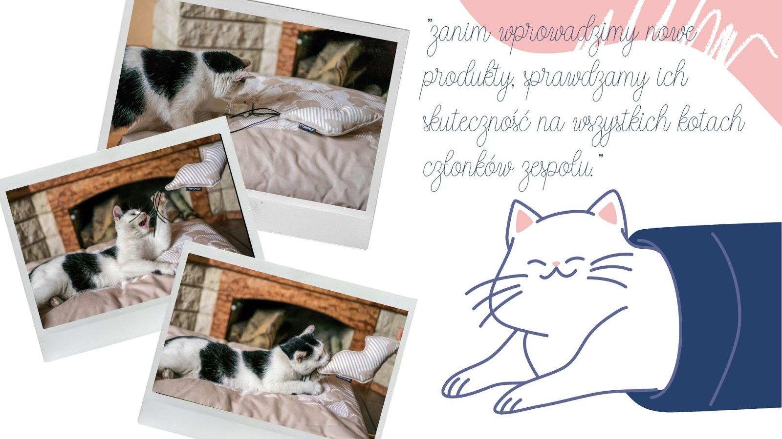 9  gdzie kupić tekturowy drapak dla kota jaki drapak dla kota najlepszy eko zabawki dla zwierząt dla kota mykotty opinie ceny gdzie kupić