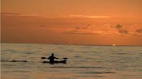 tatiana weston web surfer tahiti 32