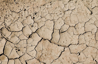 what is Soil erosion | causes of soil erosion | exact pedia