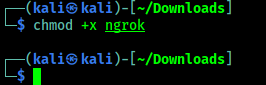executable permission ngrok