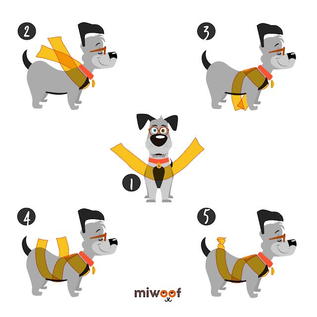 Jednoduchá metóda zbaví psa zo strachu z petárd a pomôže i pri bolestiach.