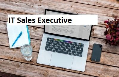 IT Sales Executive