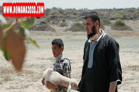 أخبار المغرب هذه القصة الكاملة لدهس فرنسي قطيع أغنام في إقليم ابن سليمان