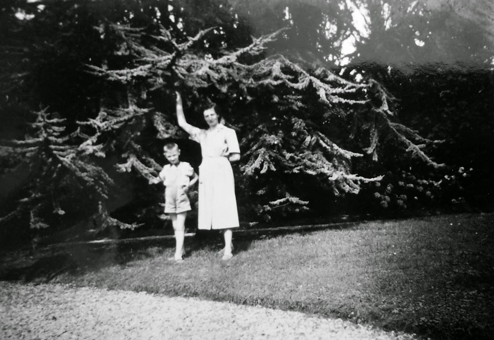 Le blog des amis de la villa cavrois des archives familiales for Piscine ypres
