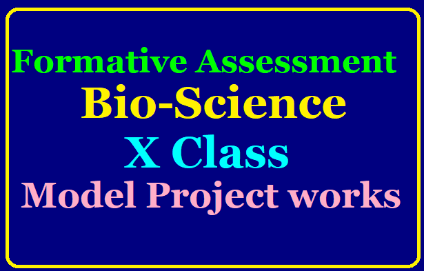 Biology Model Project Works 10th Class for FA 1 Download Bio-Science Model Project works | Class X / Class 10th Biology Model Project Works Download | Formative Assessment 1 Biology 10th class Biological Science Model Projects download/2019/08/10th-class-biology-model-project-works-formative-assessment-download.html