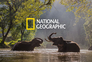National Geographic Instagram Account