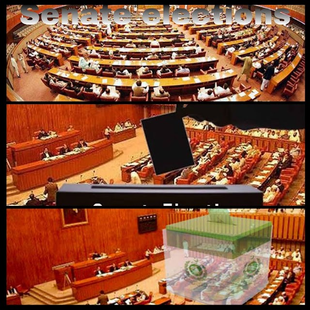Senate elections: Govt and opposition in last ditch efforts to garner support