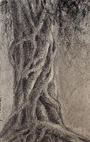 Graphite drawing of a tree trunk by Manju Panchal in small sketch book