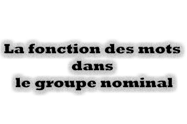 • La fonction des mots dans le groupe nominal
