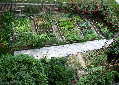 Rustic Vegetable Garden Ideas 2