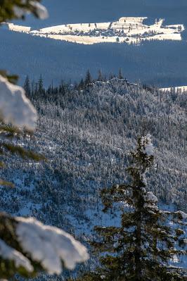 Wanderung auf den Lusen  Winterwandern im Nationalpark Bayerischer Wald 14