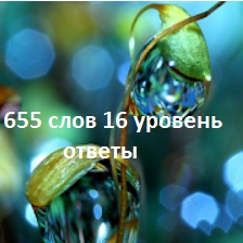 правильные названия слов на 16 уровне с картинками в словесной игре 655 слов