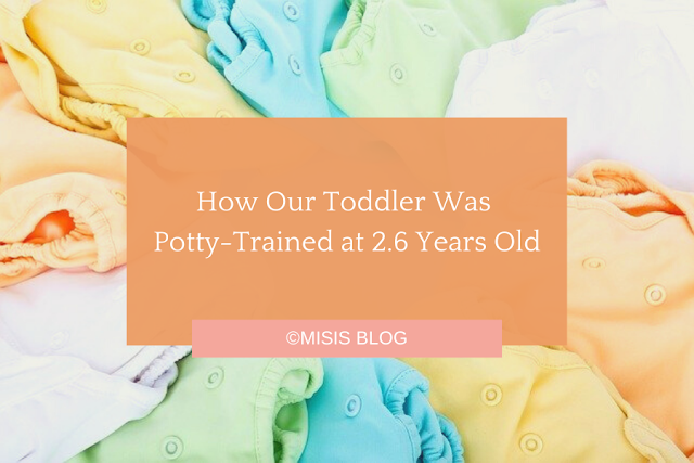 How Our Toddler Was Potty-Trained at 2.6 Years Old