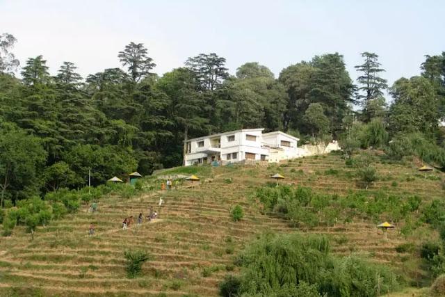 Chaubatia Garden Ranikhet