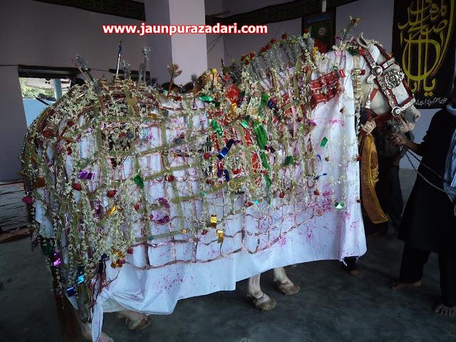 ज़ुल्जिनाह सिपाह जौनपुर