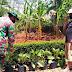 Sertu Heriyadi Belajar Tanaman Sayuran dengan Pupuk Organik