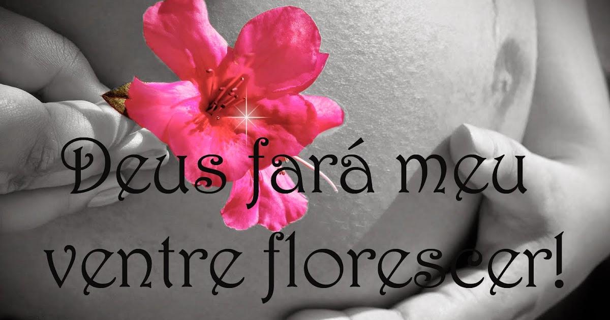 Meu Sonho Mais Lindo: Minha Força Vem De Deus E Ele Fará